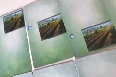 Jeudice -Atalia Jeux - Sylex Edition - AEG - Mystic Vale