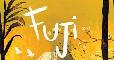 Jeudice - Super Meeple - Fuji