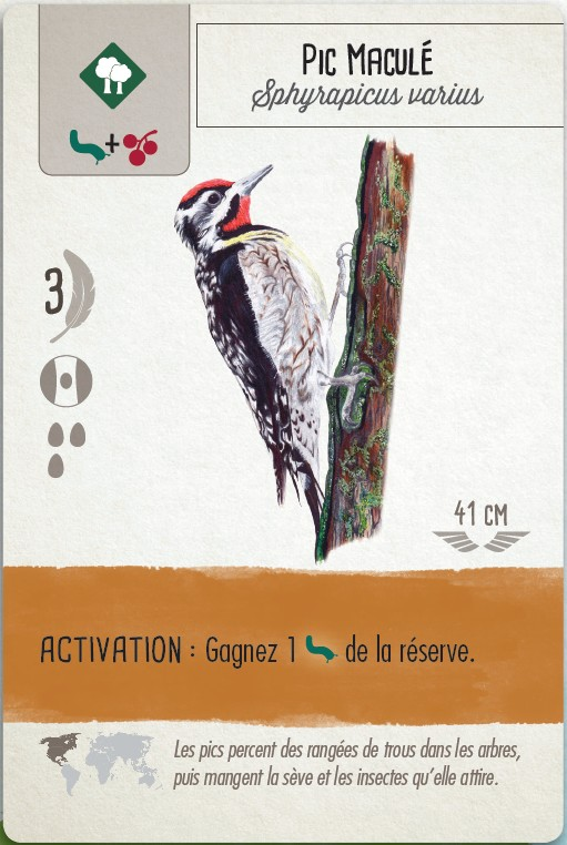 Jeudice - Stonemaier Games - Matagot - Wingspan