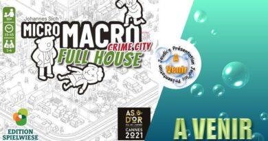 Jeudice - BlackRock Games - Spielwiese - Micro Macro Crime City Full House